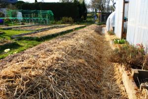 Cr er une butte de culture le jardin d 39 pices for Creer une butte permaculture